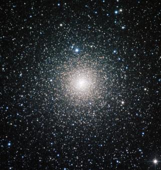 天文台国際光年の特設ページにFlaminio教授のインタビュー記事が掲載されています。